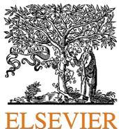 Elsevier B.V.